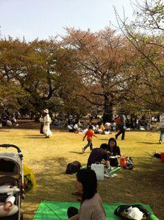新宿御苑2.jpg